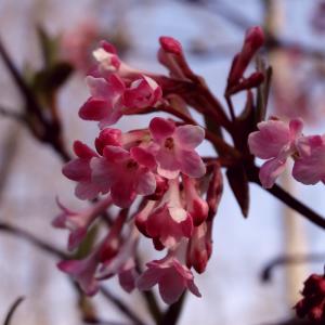 Frühjahrsanfang – Frühjahrssport!