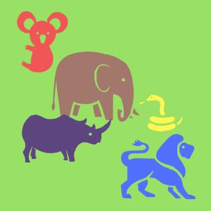 Die verrücktesten Ohren der Tierwelt