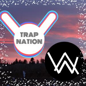 Trap Nation und Alan Walker – über Nacht zum Musik-Star